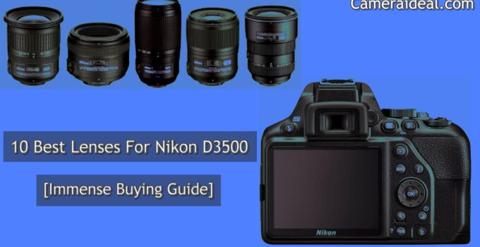 Best Lenses For Nikon D3500