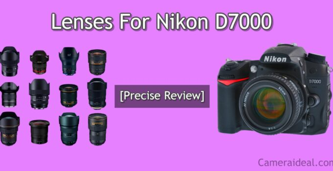 Lenses For Nikon D7000