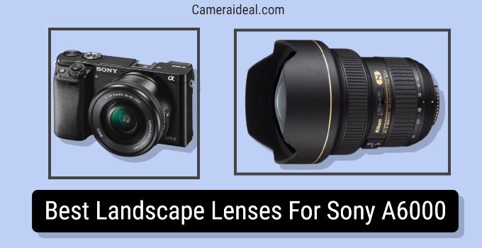 Best Landscape Lenses For Sony A6000